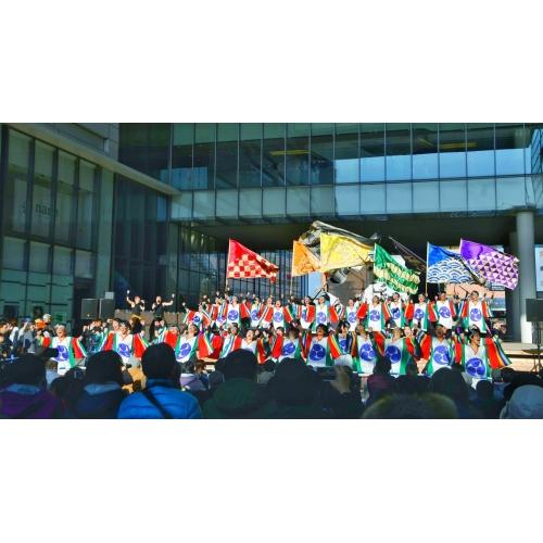 信州大学YOSAKOI祭りサークル和っしょい
